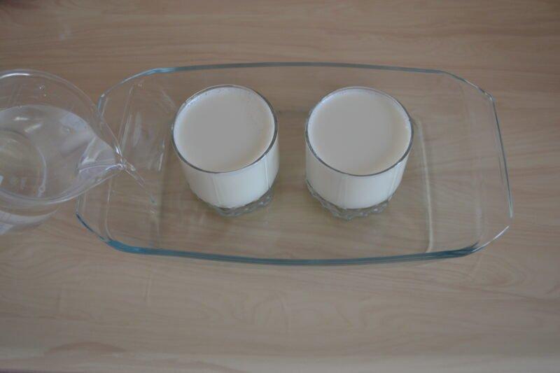 йогурт из молока в домашних условиях